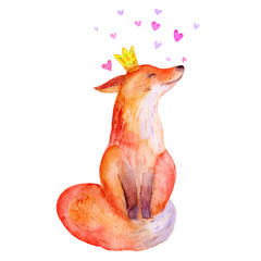 Hand drawn watercolor illustration of a cute funny fox with crown and hearts. Isolated objects. Cartoon style flat design. Concept for children print.