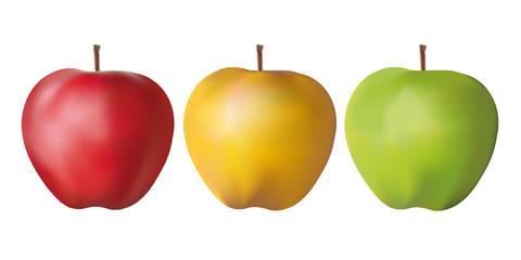 pomme - fruit - rouge - verte - jaune - couleur - santé - vitamine - diète - régime - présentation