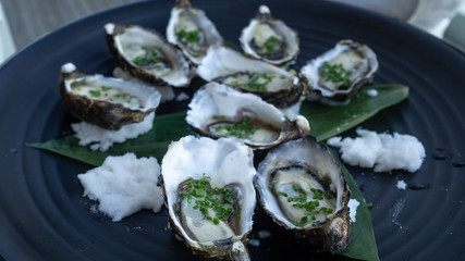 Canapes: fresh oysters topped with spring onion and rock salt