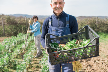 Man with crate of vegetables in garden, woman working in background