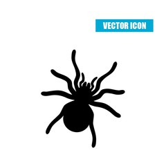 Spider silhouette icon isolated on white background