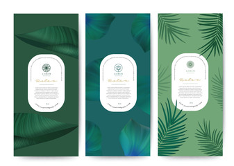 Branding Packaging tropical plant leaf summer pattern background, for spa resort luxury hotel, logo banner voucher, fabric pattern, organic texture. vector illustration.