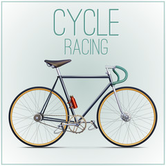 Cycle racing concept