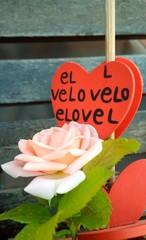 Rosa e cuore