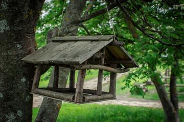 Wooden feeding trough for birds on a tree.