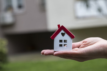 real estate and mortgage investment. Being an easy way homeowner