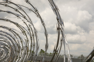 Coils of razor wire on fence