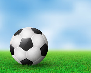 Realistic soccer ball on field from side view. EPS 10