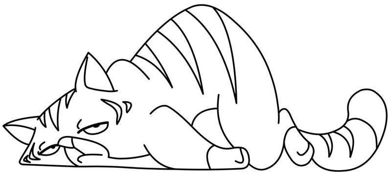 Outlined tired cat