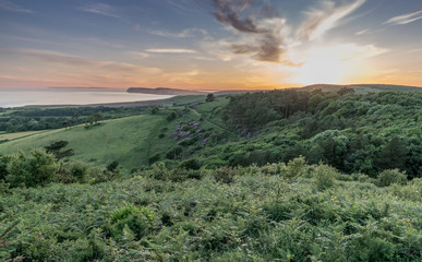 Mottistone Common, Brighstone, Isle of Wight looking towards the Needles