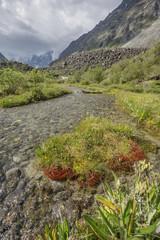 Brook in Akkem valley. Altai mountain. Russia