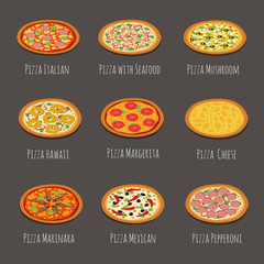 Delicious pizza icons. Pepperoni, margherita and other italian pizzas slices isolated vector illustration