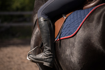 Equestrian from behind