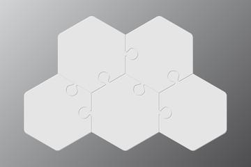 Five Piece Puzzle Hexagon Diagram. Puzzle 3 Step.
