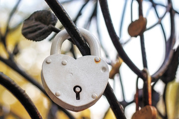 White padlock heart hangs branch iron decorative tree.