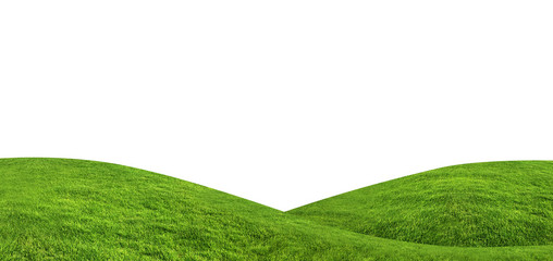 Wall Murals Hill Green grass texture background isolated on white background with clipping path.