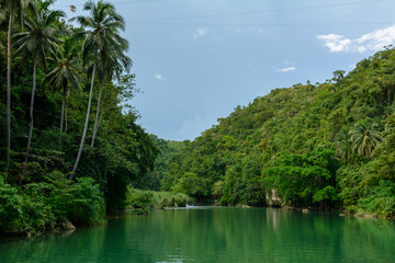 River in the jungle of Philippines