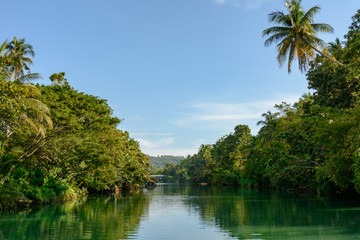 Jungle river in the tropical forest