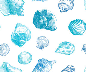 Seashells seamless pattern for your ocean life design. Elegant sea shells background. Summer template collection  illustaration