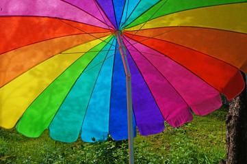 Rainbow umbrella in grass field.