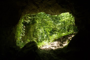 Exit from small cave. Forest in the background.
