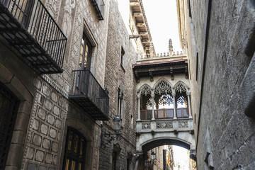 Pont del Bisbe (Bishop Bridge) in Barcelona, Catalonia, Spain