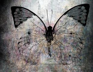Acrylic Prints Butterflies in Grunge grunge butterfly background