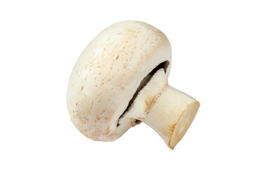 Fresh mushrooms champignons on white background.