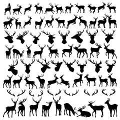 Fototapeta vector large collection of deer silhouettes