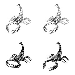 Set of black and white Scorpions for tattoos, zodiac sign, illustration