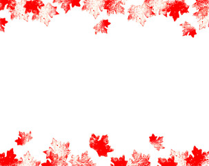 Graphic hand drawn printed red mapple leaves. Rectangular frame for prints, posters, web nad cards