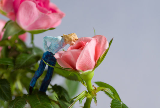 Stop and Smell the Roses - model figure smelling a rose