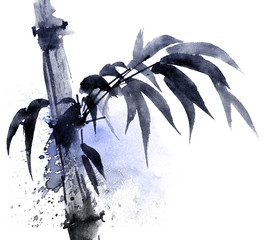 Watercolor and ink illustration of bamboo with color watersplashes. Oriental traditional painting in style sumi-e, u-sin. Artistic illustration.