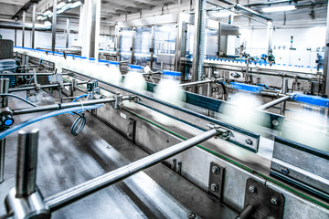 Milk production on line at the factory