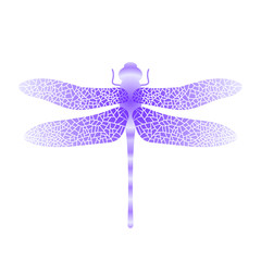 Blue Stilized Dragonfly. Insect Logo Design. Aeschna Viridls
