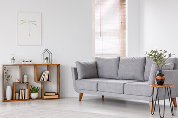 Plant on wooden table next to grey sofa in natural living room interior with poster. Real photo Wall mural