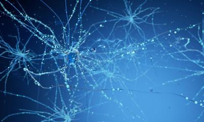3d neuron cells