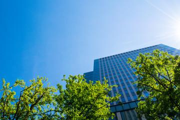 札幌都市風景 高層ビル
