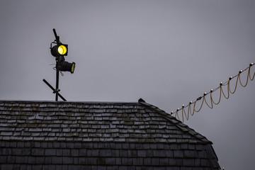 Lights, Camera, Action - Film Spotlight