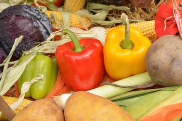 Paprika in dei Farben