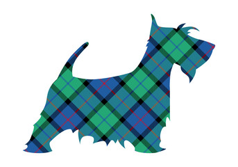Scotch terrier tartan national pattern flower of scotland