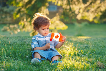 portrait of little white Caucasian baby boy holding and looking at Canadian flag with red maple leaf. Toddler celebrating national Canada day sitting on grass in summer  park outside