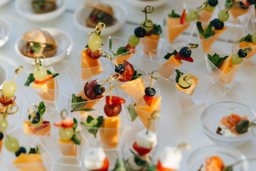 delicious cold snacks catering at the wedding party