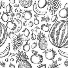 Vector image of painted fruits on a white background. Graphic seamless pattern.