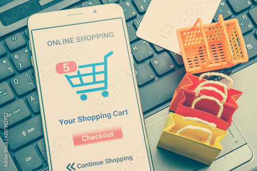 Online shopping / retail ecommerce and delivery service