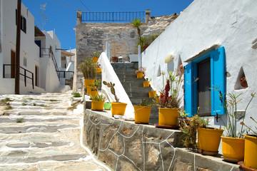 Yellow flower pots in Sifnos in Greece