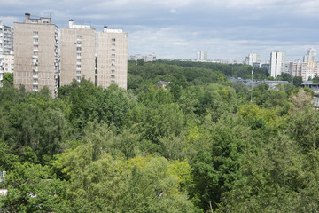 Green Moscow - in summer