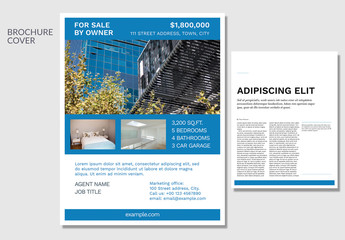 Real Estate Property Flyer Layout with Blue Accents
