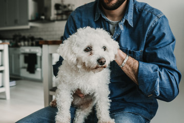 Handsome young man playing with his cute little white dog at home. Relaxed on the sofa. Lifestyle. Pet photography.