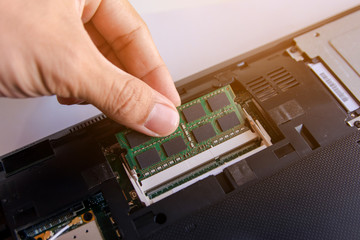 Wall Mural - Technician installing RAM stick (random access memory) to socket on laptop